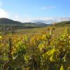 image de Un petit tour en Alsace…