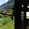 image de Initiation aux vins de Madère