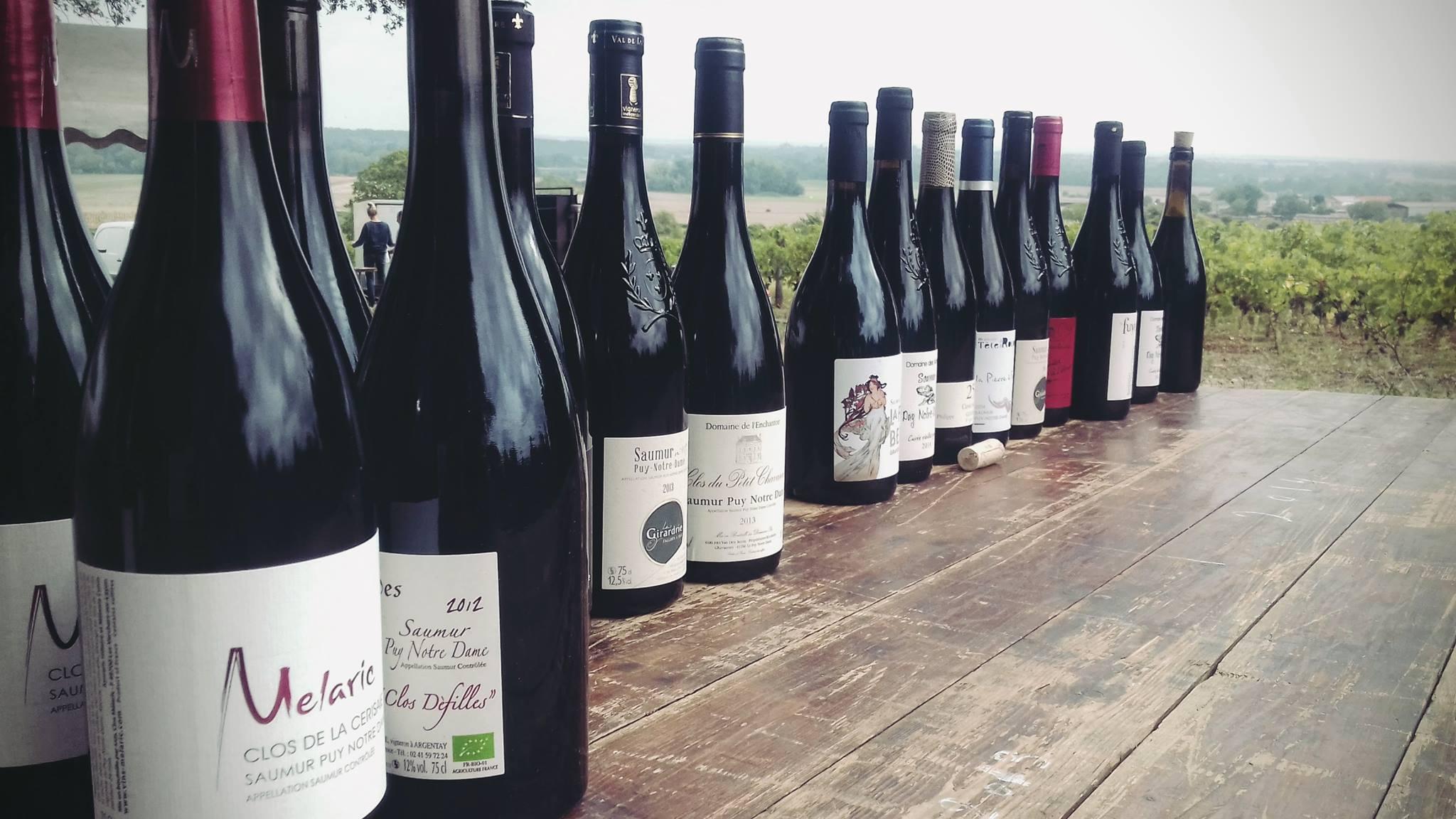 Le Bon Goût Du Partage Sur Saumur Puy Notre Dame Vin